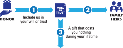 Bequest Diagram